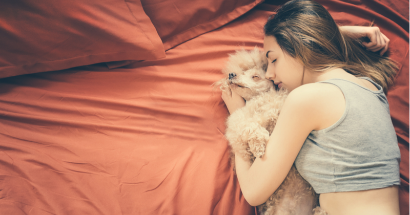 The Pros And Cons Of Sleeping With Your Dog