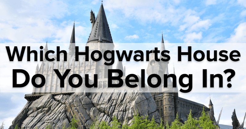 Which Hogwarts House Do You Belong In?