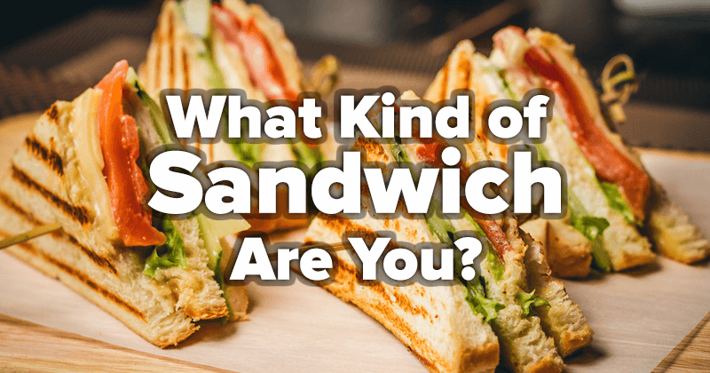What Kind of Sandwich Are You?