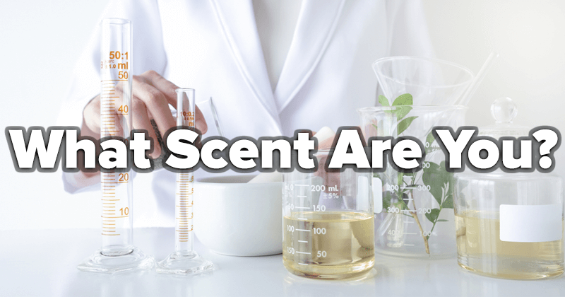 What Scent Are You?